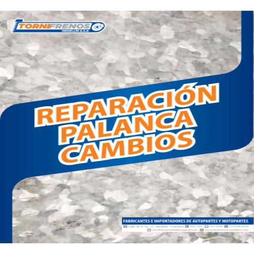 REPARACION PALANCA CAMBIOS